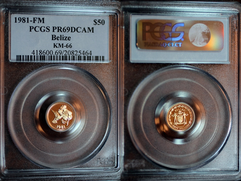 PCGS Set Registry® Collectors Showcase: Loch NESS Gold